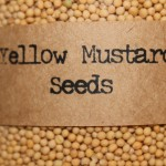 In Larger Quantity for Homemade Mustard.