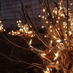 Making good use of what nature leaves behind: lit bare hydrandea bushes.