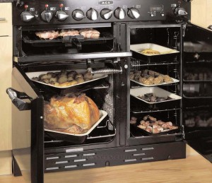 Two ovens and a broiler; convection heat.